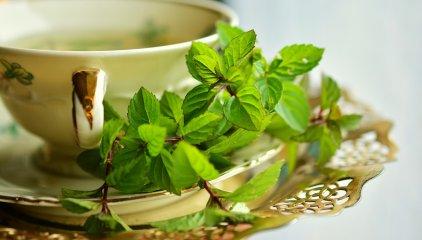 Zielona herbata – niepozorne wsparcie w drodze do zdrowia i smukłej sylwetki